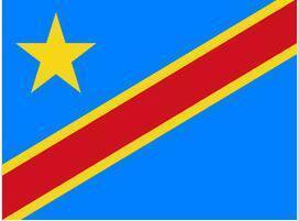 刚果(金)F.E.R.I进口货物电子跟踪单申请规则