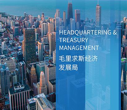 中国企业投资非洲,为何应优先聚焦毛里求斯?