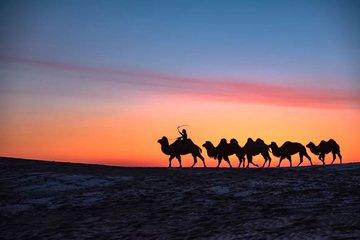 """中国在阿尔及利亚举办""""一带一路""""图片展"""
